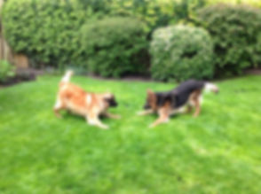 Phoebe & Benson play.jpg