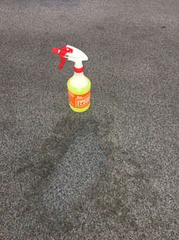 Carpet spot cleaned with FreshClean Target Spray