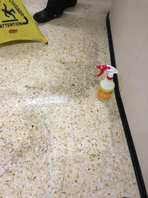 Badly stained terazzo tiling cleaned with FreshClean