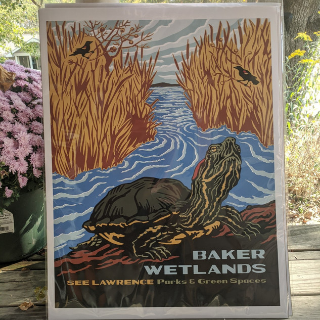 #41 Baker Wetlands print