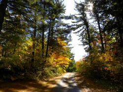 Trans-Canada Trail next door