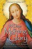 book33DaysMorningGlory.png