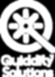 Quiddity Solutions, LLC