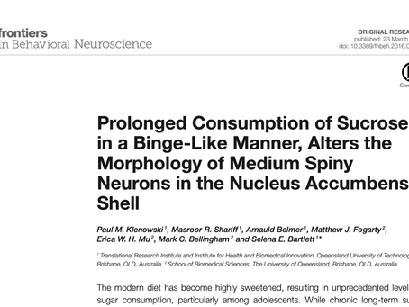 Prolonged Consumption of Sucrose in a Binge-Like Manner, Alters the Morphology of Medium Spiny Neuro