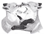 Fox Cubs Graphite Drawing