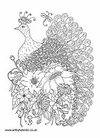 Peacock Colouring page