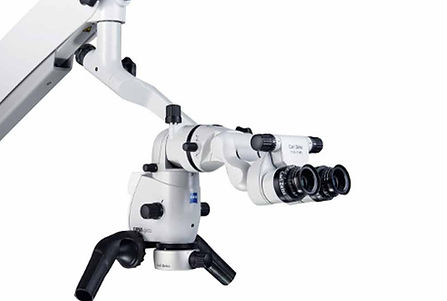 microsopio.jpg
