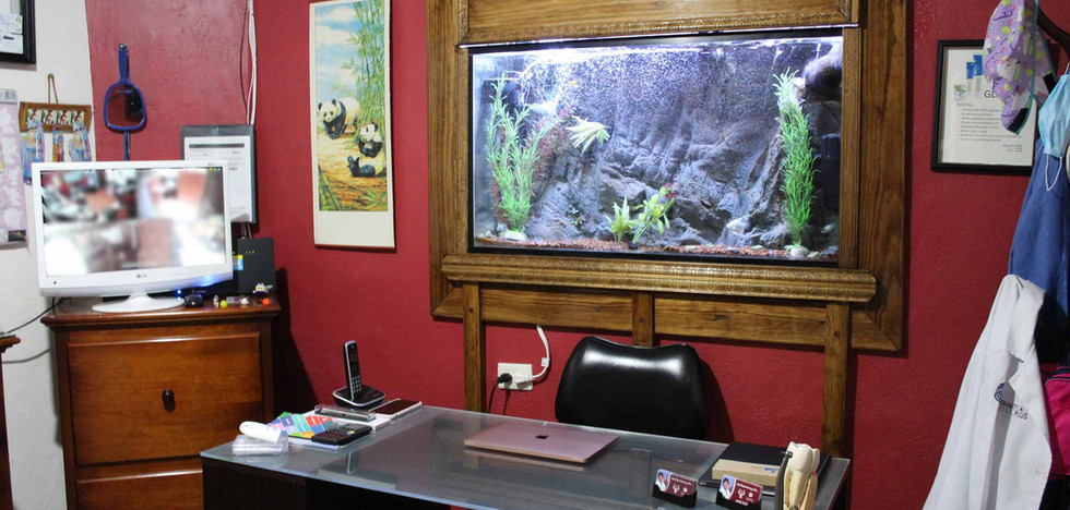 Consutlrio / Consulting Room