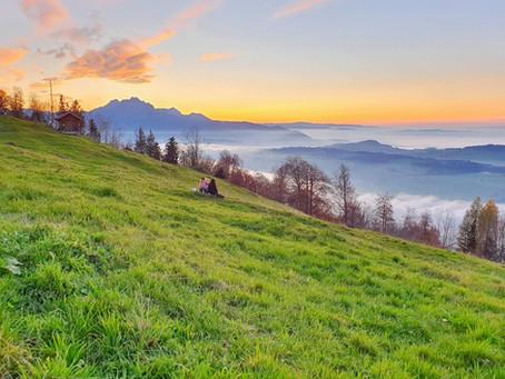 Authentisches Rigi-Picknick, zu Berg oder am See!