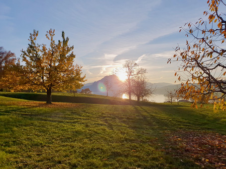 Die Rigi erwacht im goldenen Zauber des Herbst!