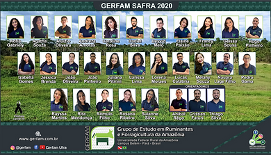 Photo GERFAM 2020 site.png