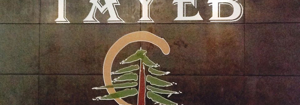 Chee Tayeb Logo4.jpg