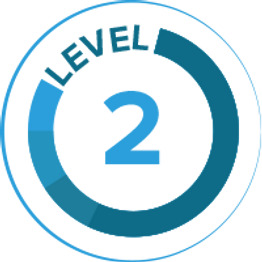 level-2-icon.png