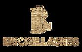 BrickelLashes-Textura (2) (1).png