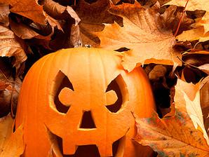 Holding Onto Halloween...