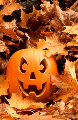 It's that time again… TRICK or TREAT!