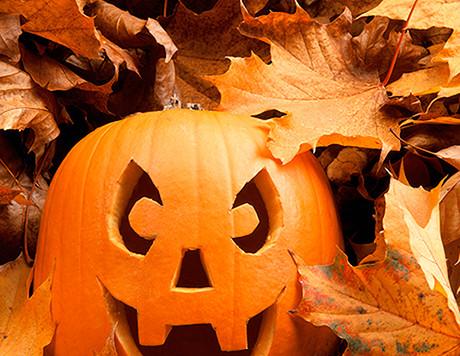Do You Love Halloween?