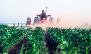 America's agriculture is 48 times more toxic than 25 years ago. Blame neonics
