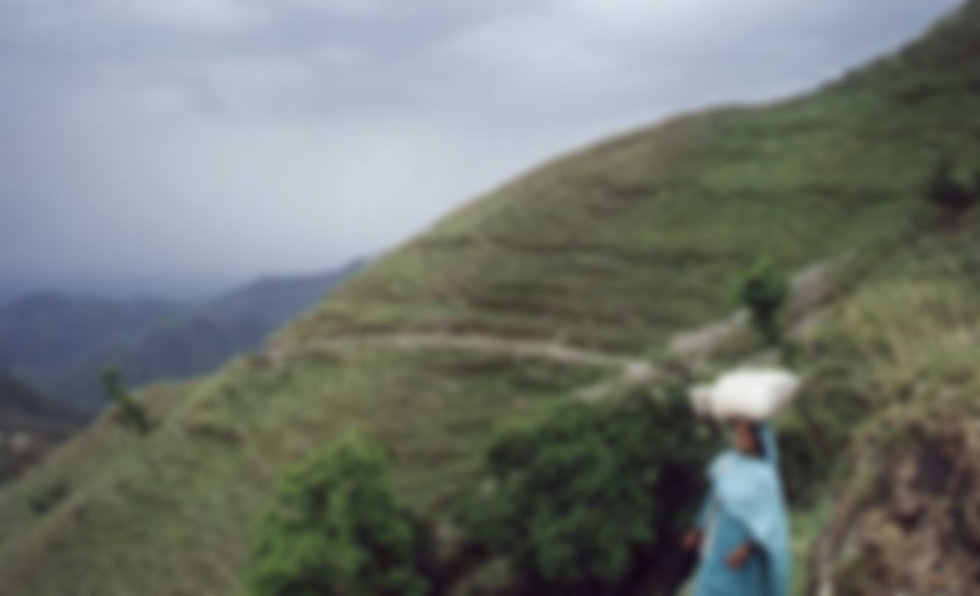 a women carrying rice in the foothills o