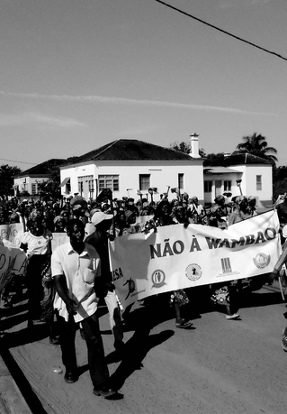 Growing Resistance: The Rise and Fall of Another Mozambique Land Grab