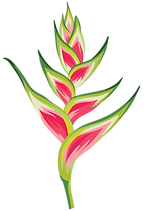 Flower 02.png