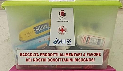 RACCOLTA CARITAS 1.jpg
