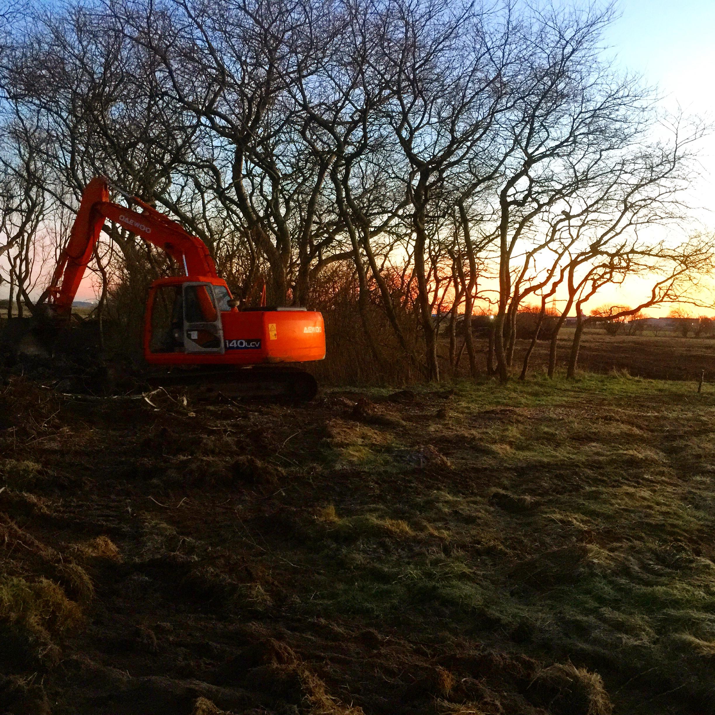f excavation