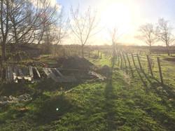 A1 brook farm