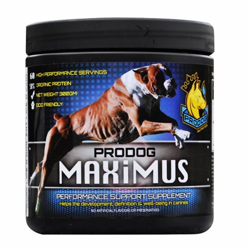 pro Dog Maximus