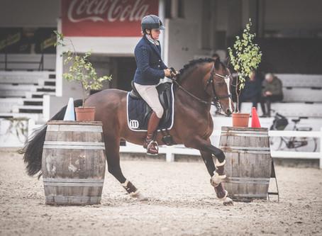 Belgian Championship Working Equitation