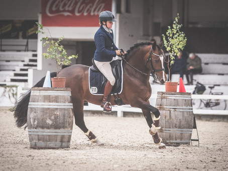 Belgian Championship Working Equitation
