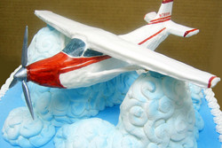 Adult Sculpted Airplane Cake
