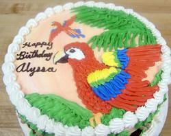 Girl Parrot Cake