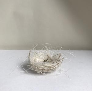 nest III, 2020