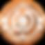 bronze-shiny-hr_copy-removebg-preview.pn