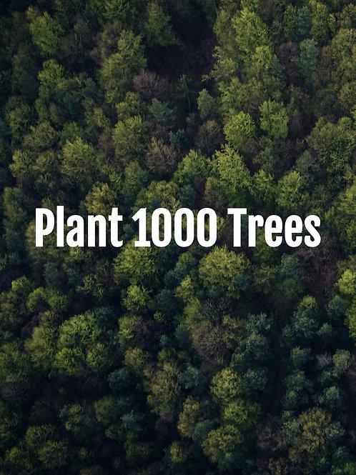 Plant 1000 Trees