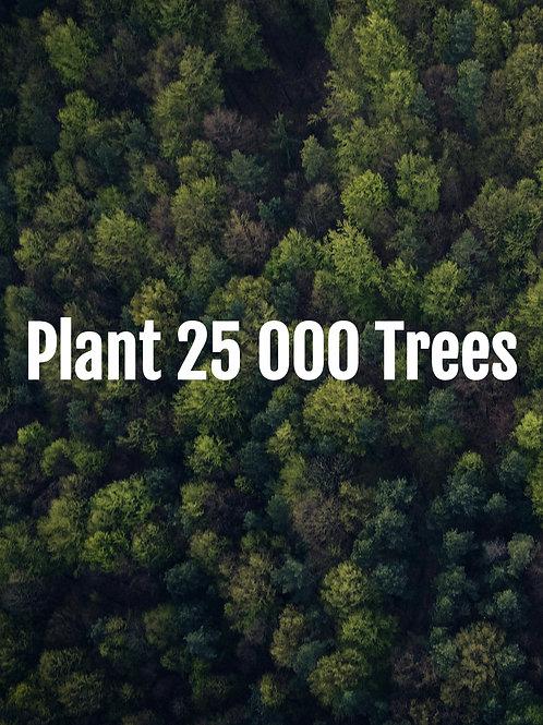 Plant 25 000 Trees