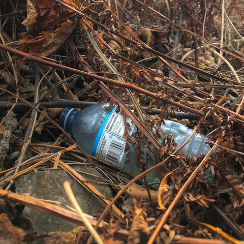 What do you mean when you state plastic has been prevented, removed, identified, tracked, and/or recycled?