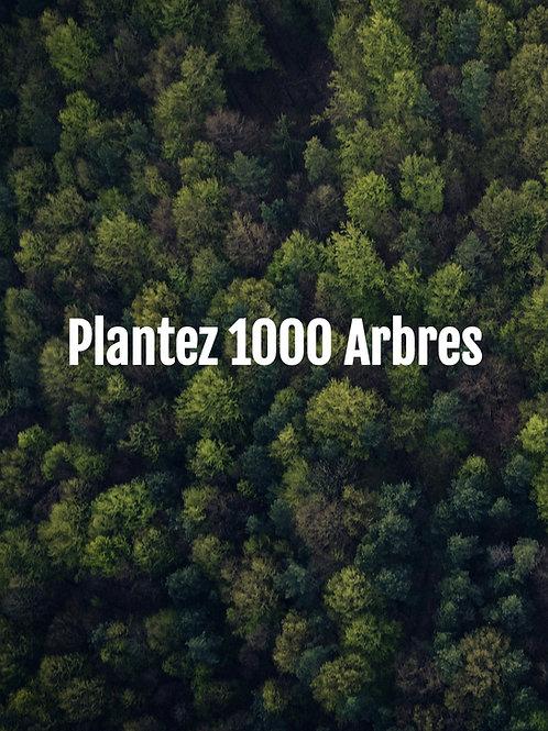 Plantez 1000 Arbres