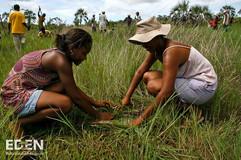 Ladies planting.jpg