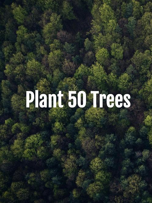 Plant 50 Trees