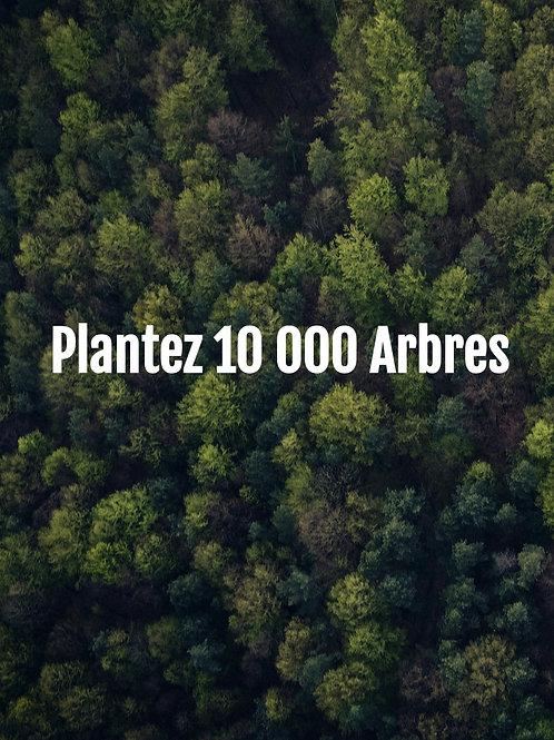 Plantez 10 000 Arbres
