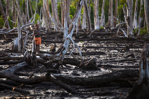 Woman_Worker_in_Devasted_Area_Mangroves.