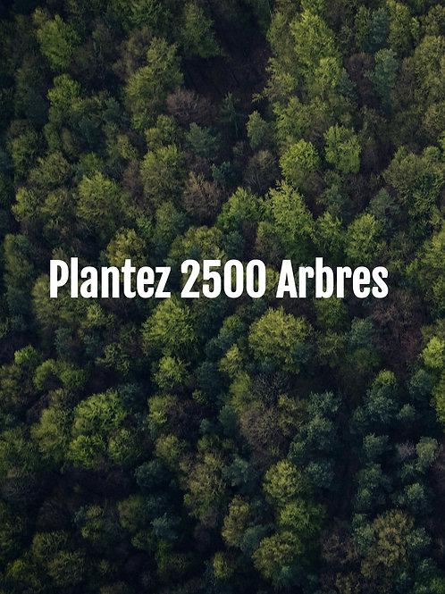 Plantez 2500 Arbres