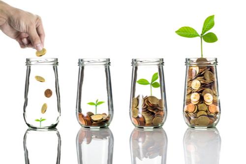 economia educação financeira colha os frutos