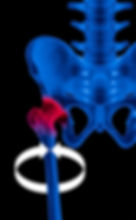Hip Rotation-Final Upright.jpg