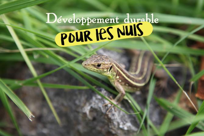 """Le """"développement durable"""" pour les nuls"""
