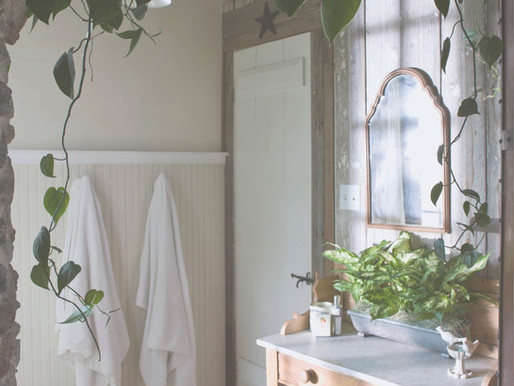 Creating a Toxin Free Home