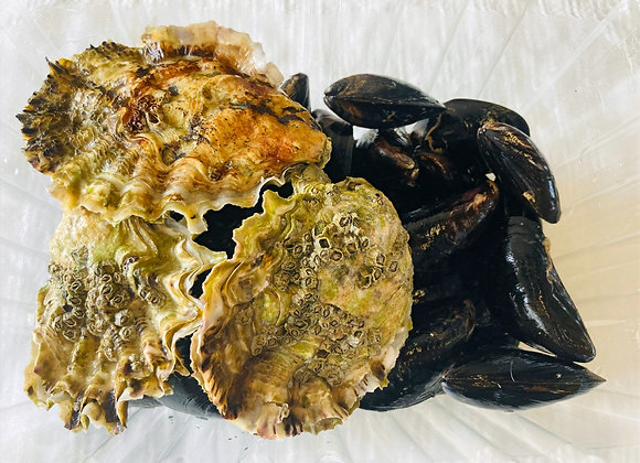 Mussel and Oyster combo