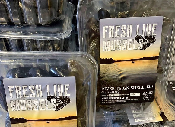 Mussels 1kg Trays